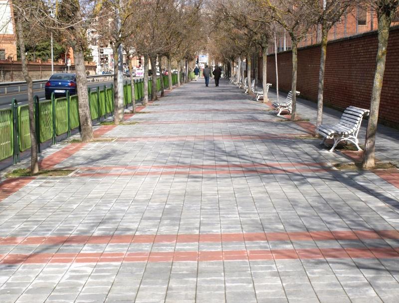 El Suelo De Palencia Ya Elimina La Contaminación De 12.000 Coches Al Año